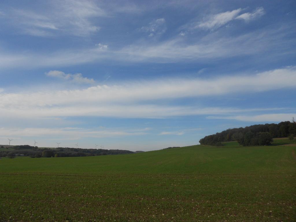 Les champs à proximité du village